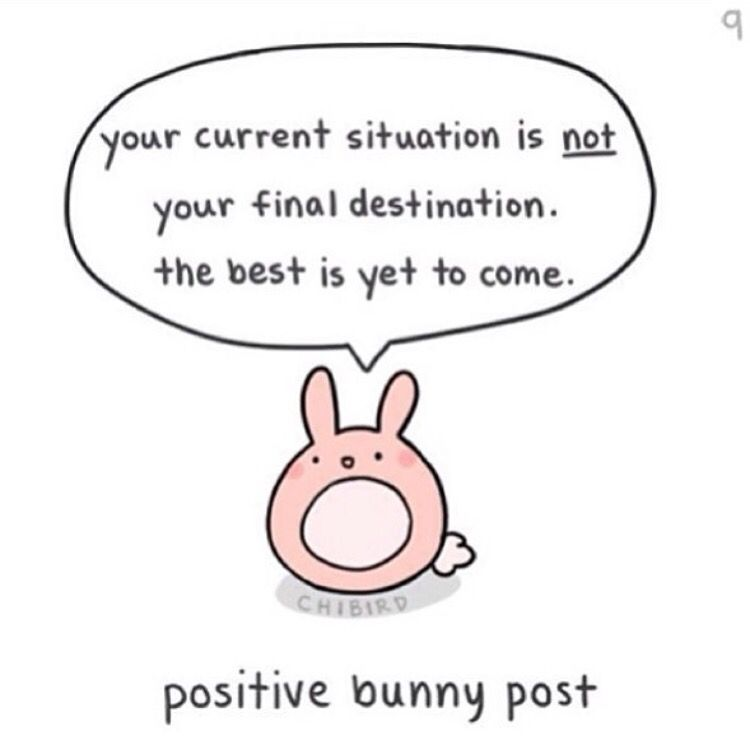 Motivational Bunny Cute Inspirational Quotes Cheer Up Quotes Cutie Quote