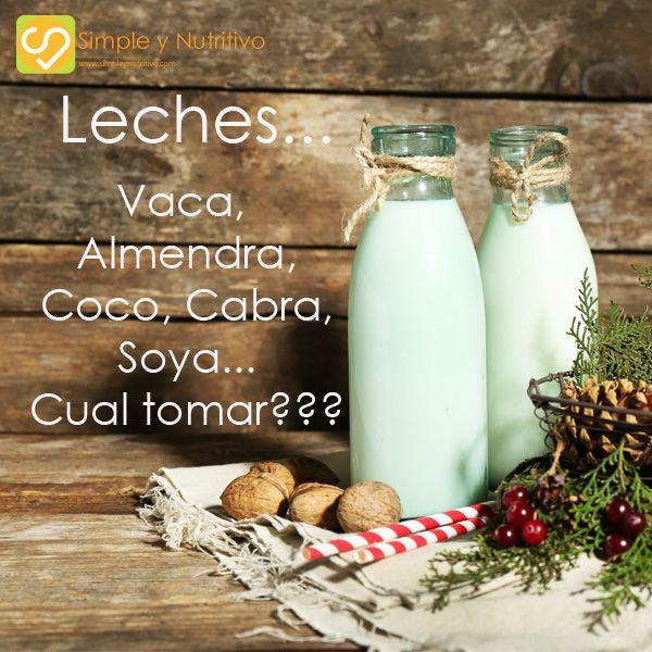 LECHES… VACA, ALMENDRA, COCO, CABRA, SOYA…CUAL TOMAR???