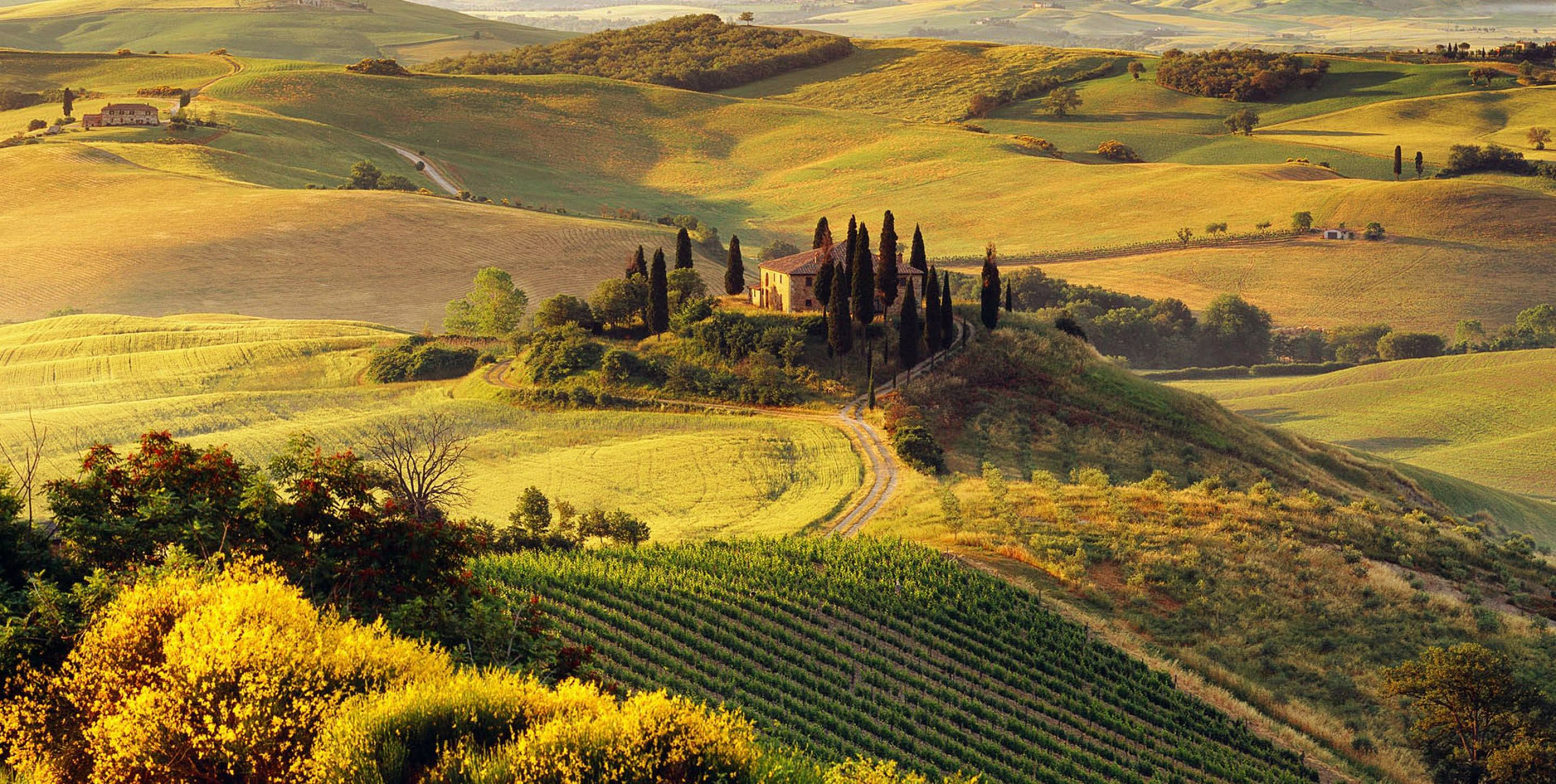 With Its Golden Landscapes Pleasant Weather Welcoming People Flavorful Dishes And Amazing Cities Tuscany Is Italy Landscape Summer Landscape Tuscany Italy