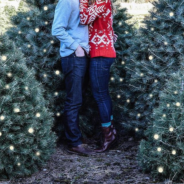 Henry S Christmas Tree Farm In Hope Ri Engagementphotos Engagementphotography Couplesphotography Wi Cute Engagement Photos Photo Christmas Time Engagement