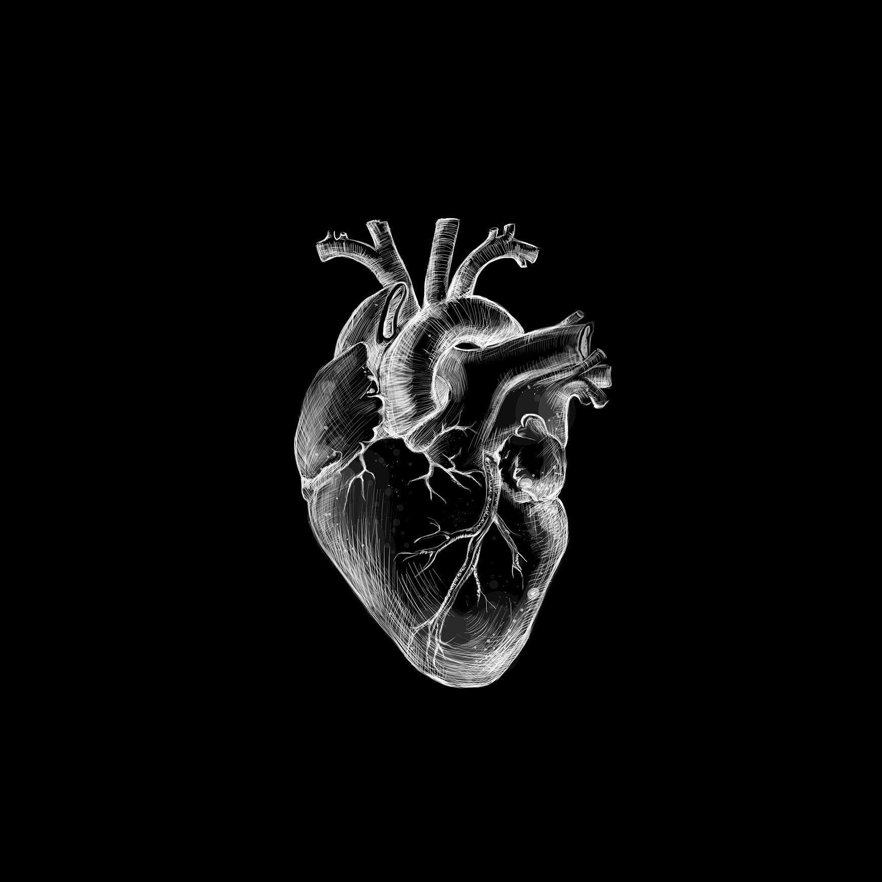 Black Heart Black Aesthetic Wallpaper Dark Wallpaper Iphone Black Heart