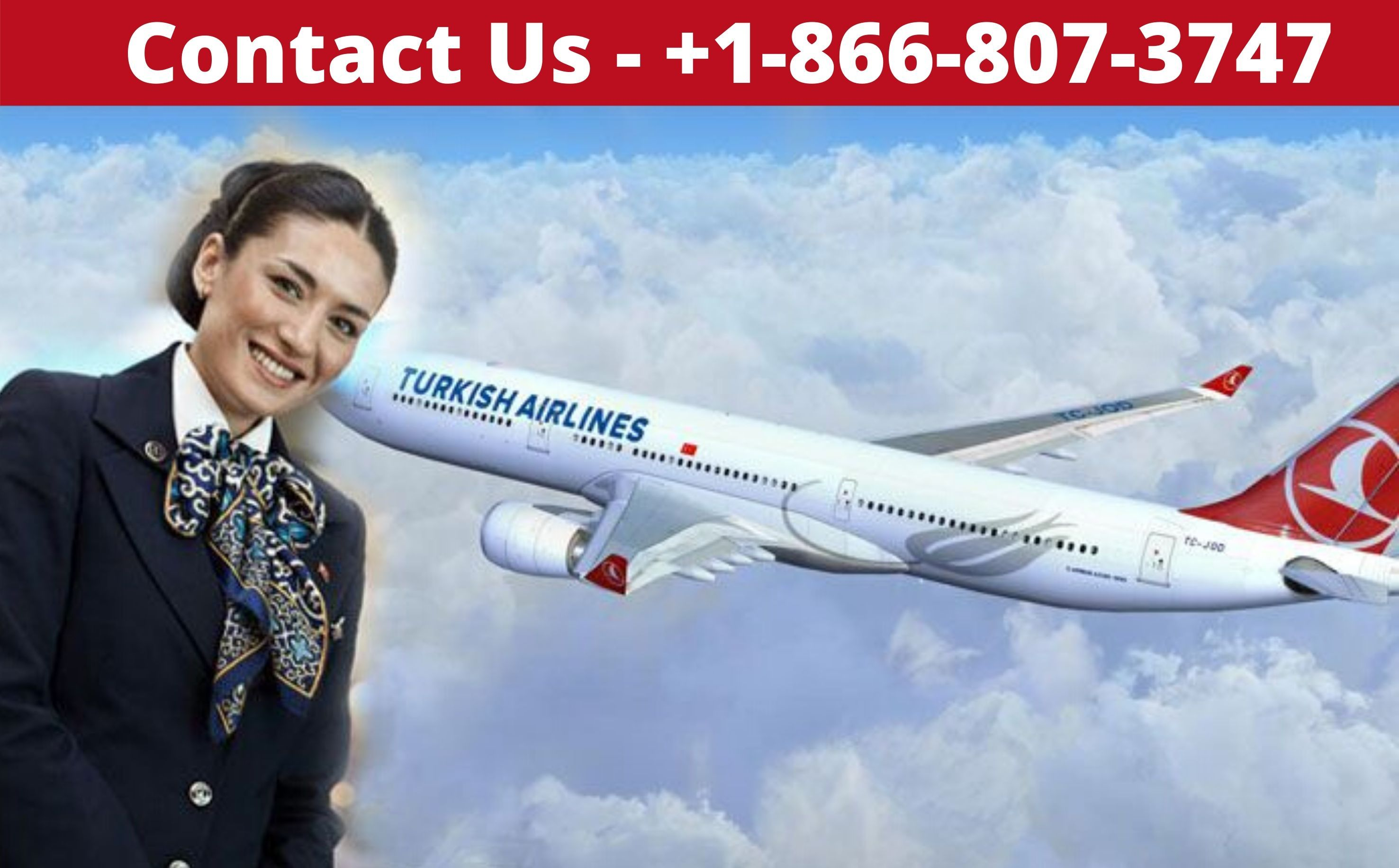 Turkish Airlines Reservations 1 877 209 1629 Booking Number In Usa Turkish Airlines Airline Reservations Airlines