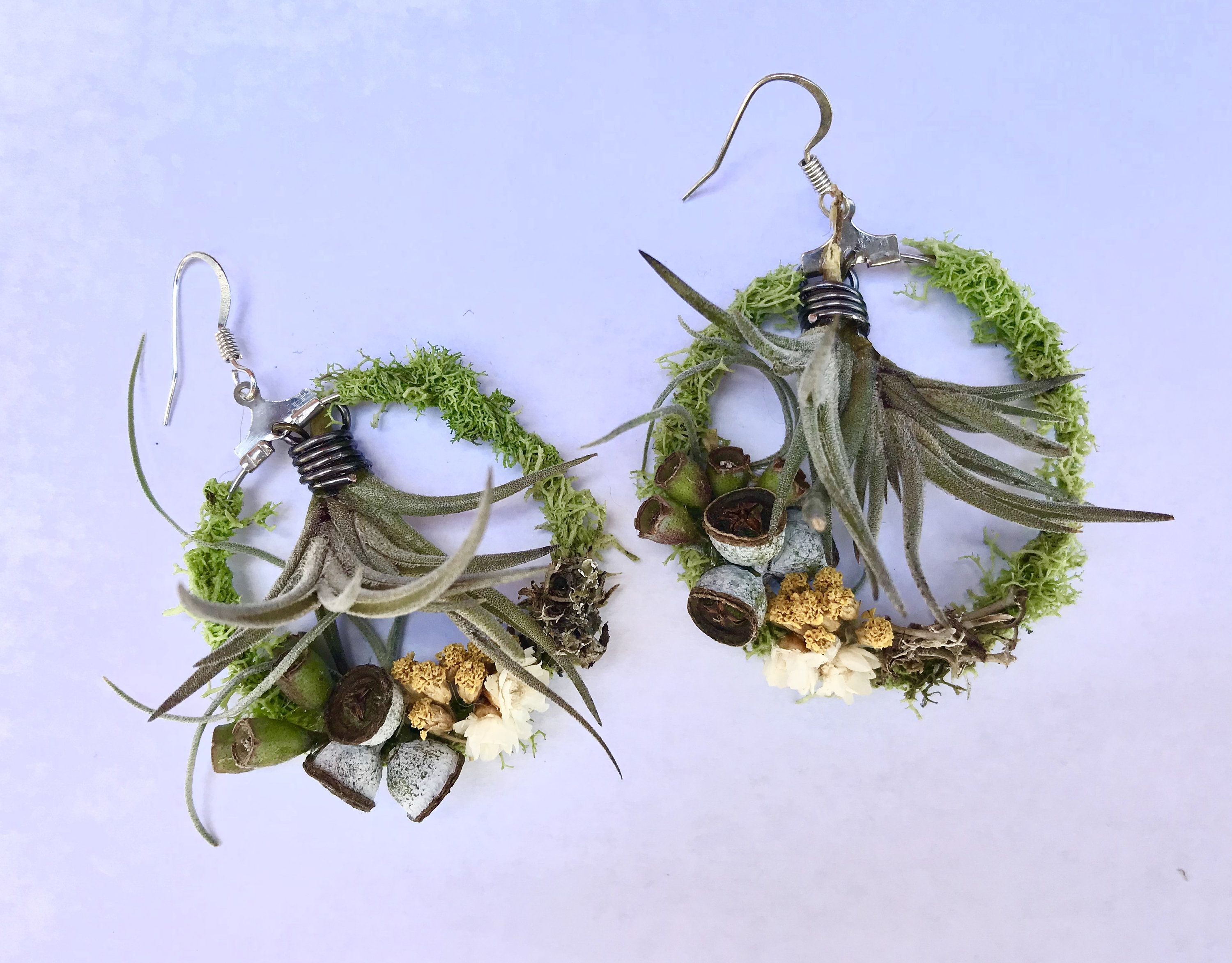 Mossy Living Air Plant Hoop Earrings By Easygrowindesigns On Etsy