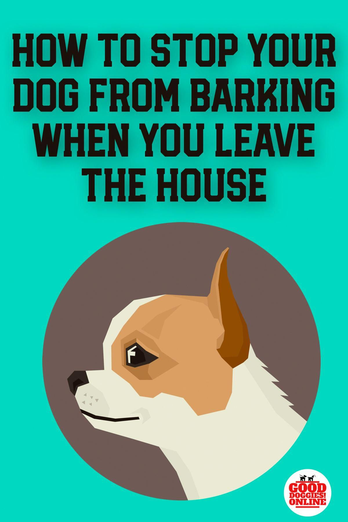 Stop your dog from barking when you leave the house with these dog
