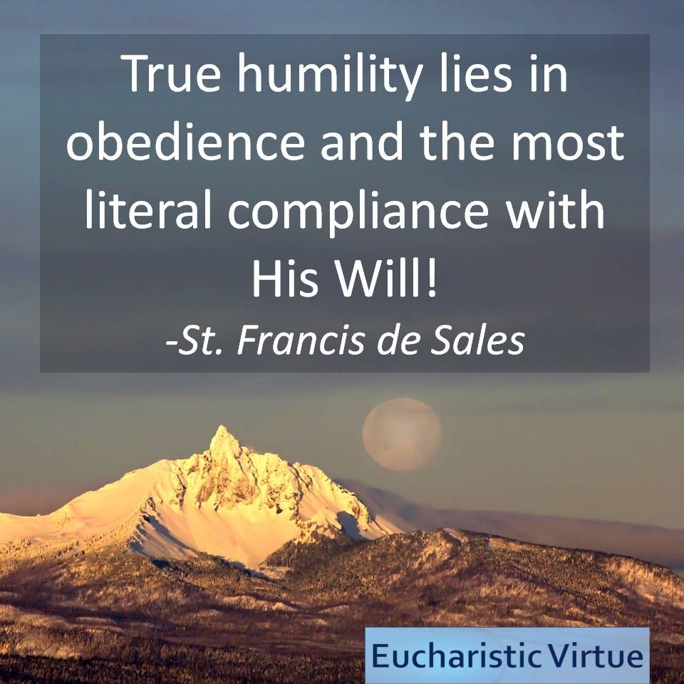 Virtue Quote From St Frances De Sales  Virtue Quotes