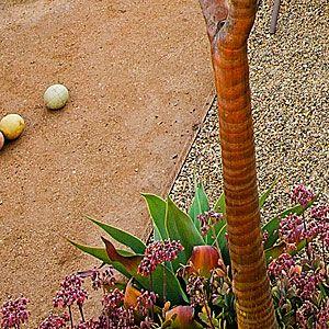 Bento Box Outdoor Living Spaces Garden Boxes Garden