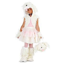 shaggy dog costume...another poodle costume possibility for Ella ...