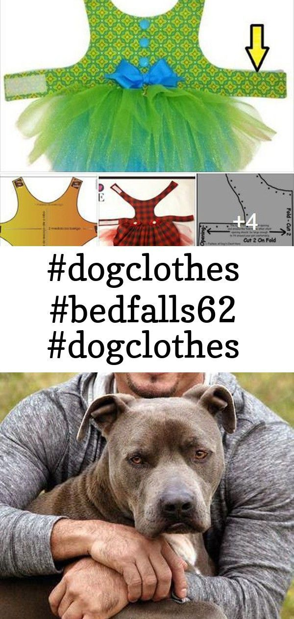 #dogclothes #bedfalls62 #dogclothes #bedfalls62 #dogclothes #bedfalls62 #dogclothes 10 Dog-Training Tricks Straight From the Dog Whisperer #puppytrainingtips Having your dog perform tricks in front of your friends is not only a way to have fun and bond together with the pet, but also a great way to mentally stimulate your pooch. There are many practical and useful dog tricks you can teach a pupper. We have selected 8 coolest dog tricks that some owners may not yet know about. You can teach an ol #bedfalls62