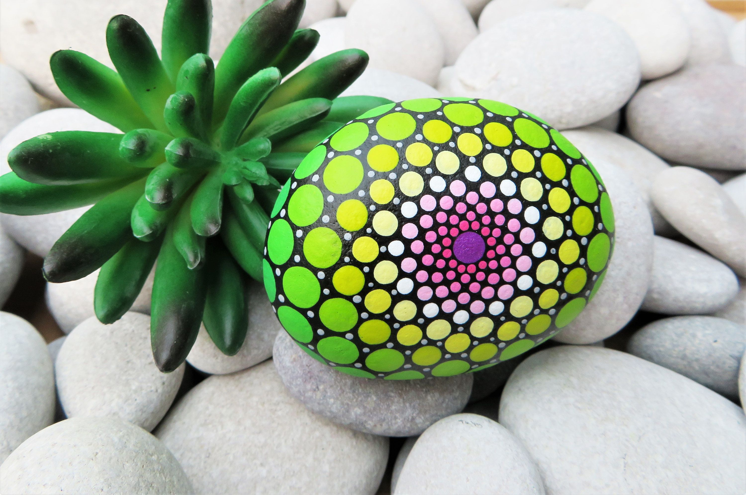 Charming green, pink, silver hand painted pebble. Bold bright colours. Geometric style design. Floral, indoor garden. Mandala. Yoga ornament