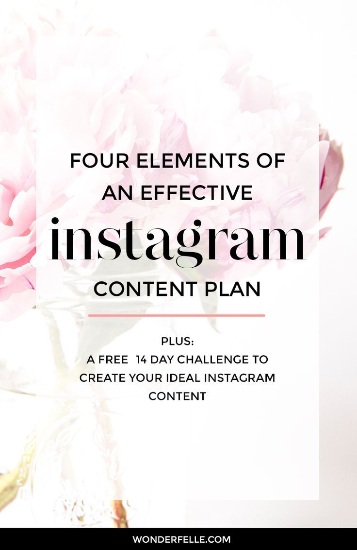 Elements Of An Effective Instagram Content Plan  Content