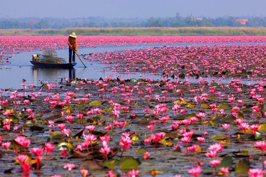 River Side Beauty Of Kerala Wonders Of The World Beautiful