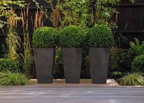 What Size Pot What Size Plant Contemporary Planters