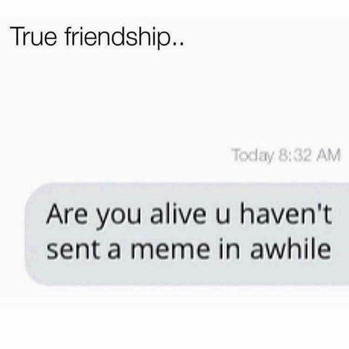 Friendship Goals Friendship Goals Funny Friendship Goals Quotes Friendship Goals