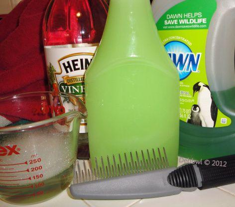 Natural Dog Shampoo Flea Removal Recipe Diy Dog