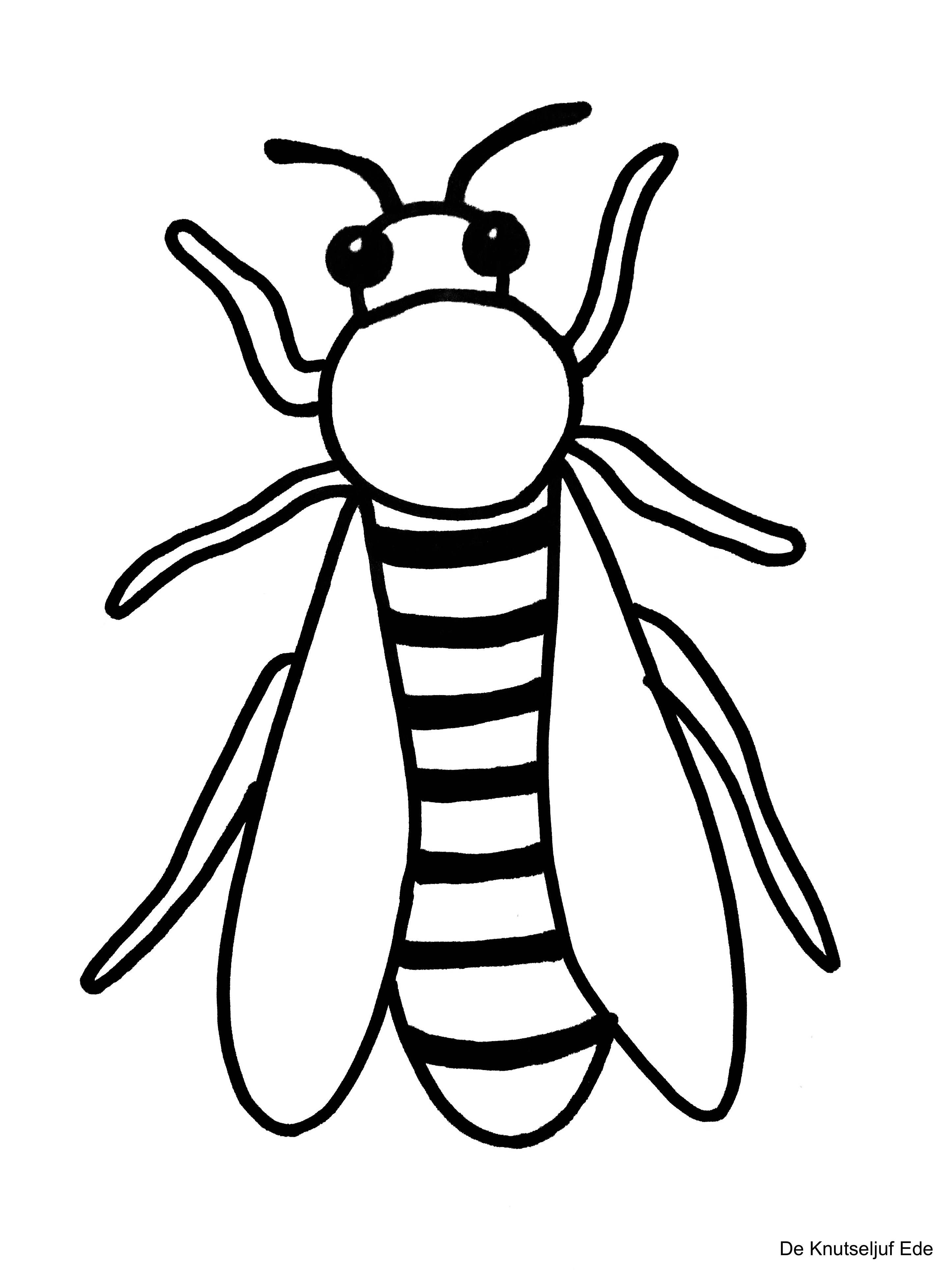 Kleurplaten Kriebelbeestjes Insekten Kleurplaat Kleurplaten Deknutseljuf Sprinkhaan De Knutseljuf Ede Insecten Kleurplaten Gratis Kleurplaten