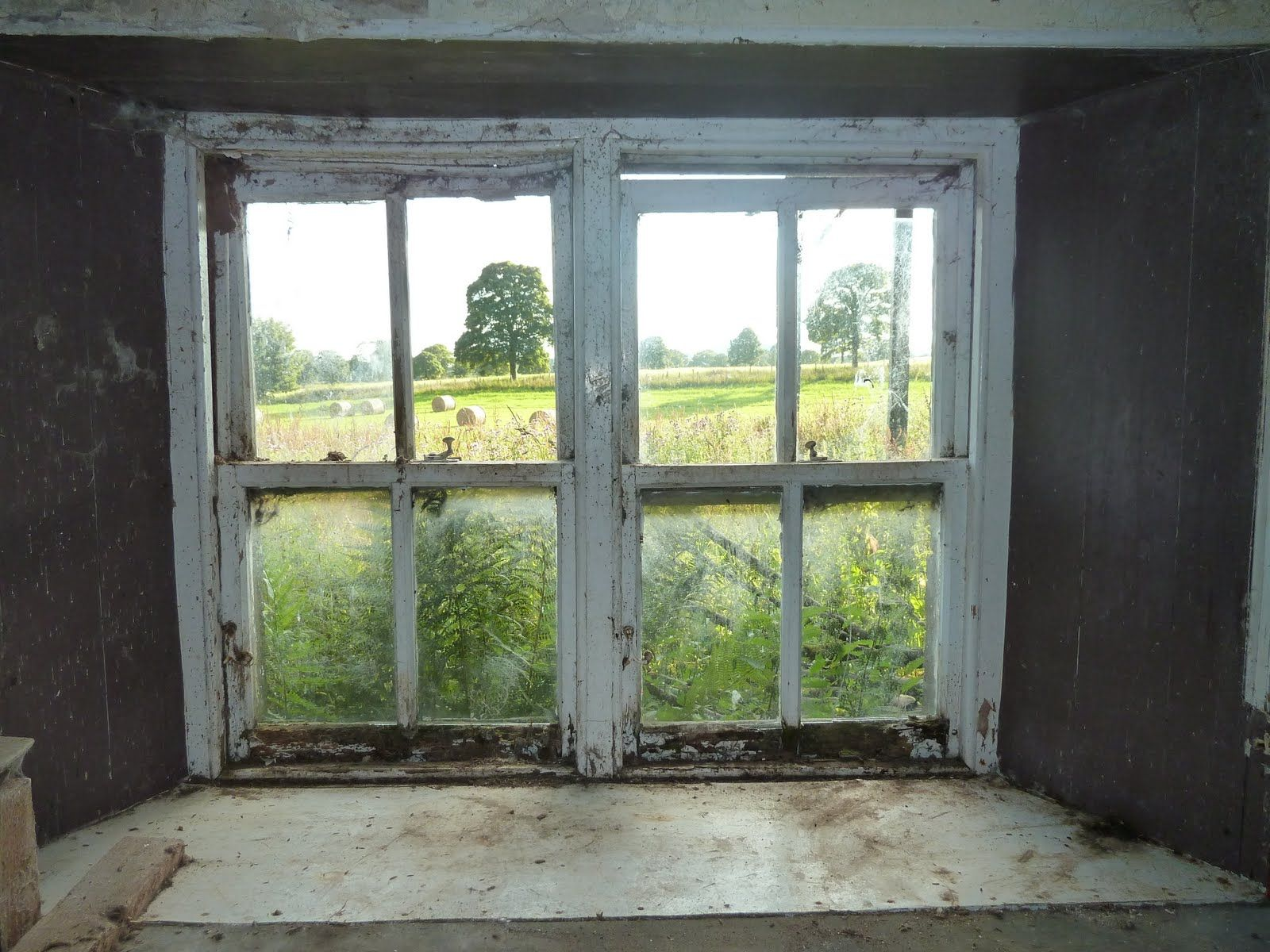 The farm at the back of beyond: Scary monsters | Old windows, Interior  windows, Windows