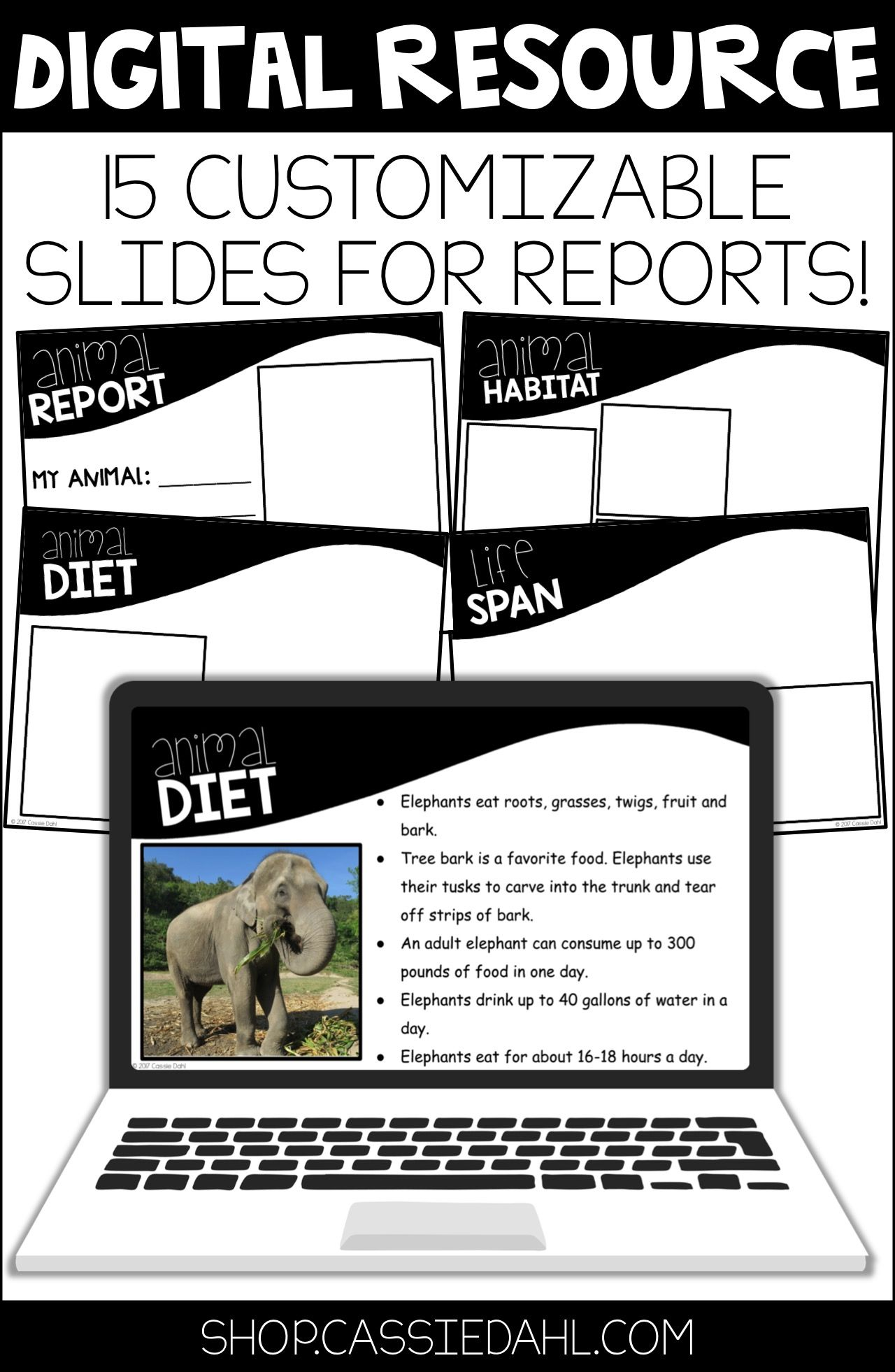 Animal Research Report Digital Templates