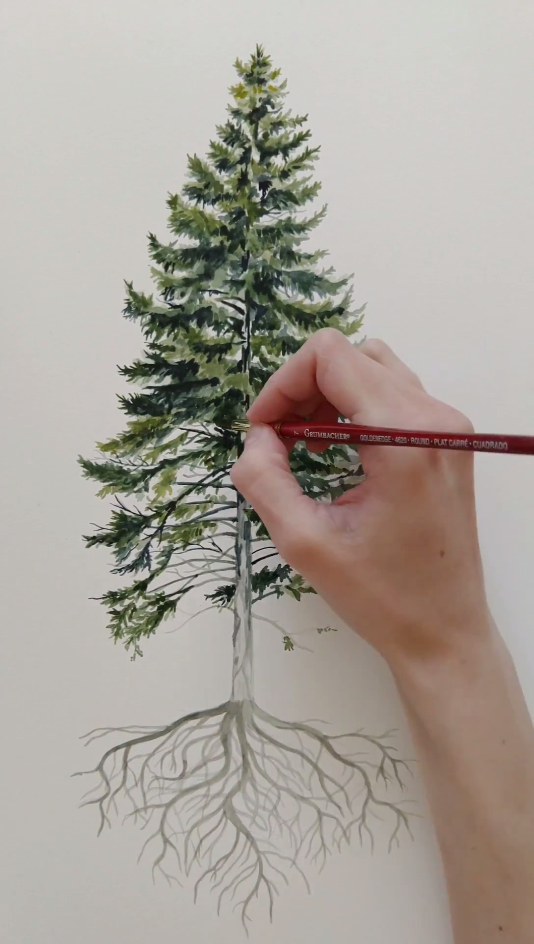 Watercolor Pine Tree Process video. Full time lapse of the artwork. Here is the process showing how
