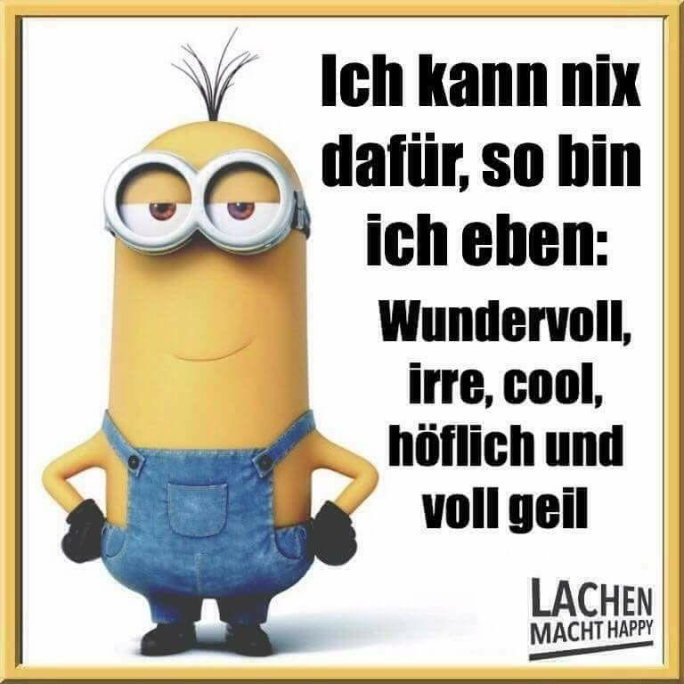Pin von Irina Kunz auf Lachen macht Happy /Minions ...