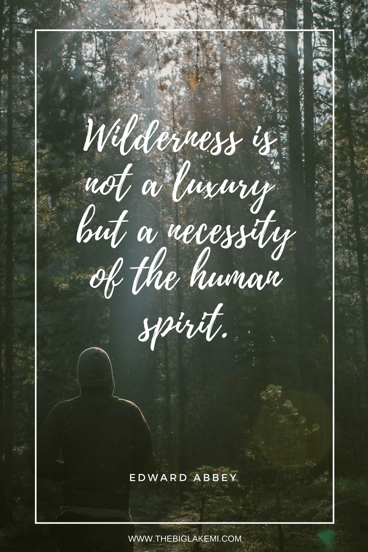 15 Beautiful Quotes About Nature And Wilderness To Inspire You Nature Quotes Beautiful Nature Quotes Wilderness Quotes