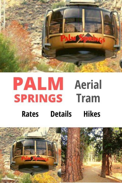 Mount San Jacinto State Park - Desert to Mountain Palm ...