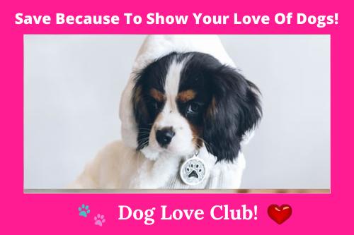 #puppiesofinstagram #dogsofinstagram #puppy #dogs #puppies #dog #puppylove #affiliatelink