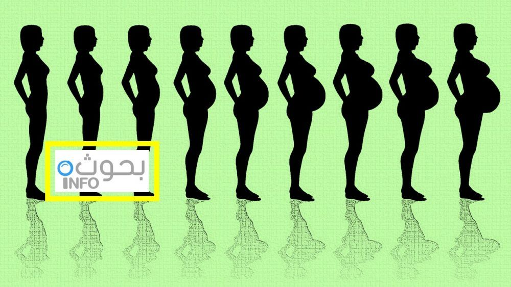 نصائح للحامل حسب الشهور Movies Movie Posters Poster