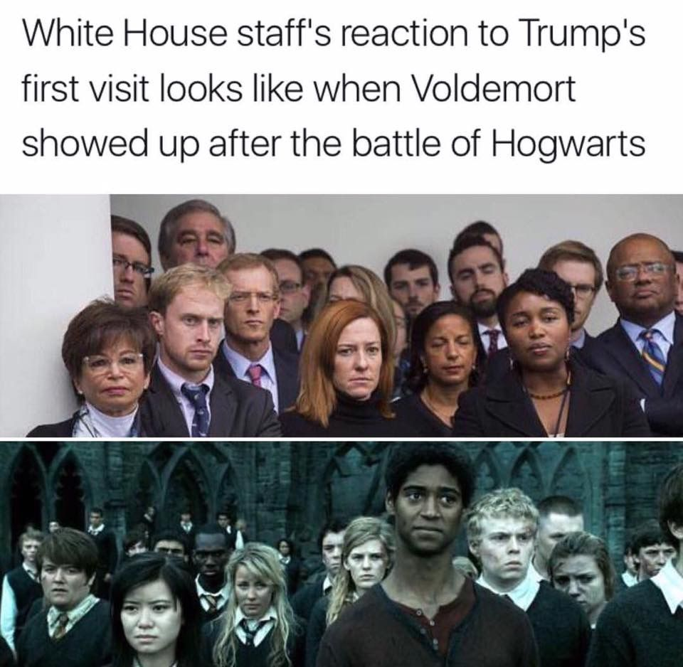 I Know I Know Politics But This Is Funny Harry Potter Funny Harry Potter Memes Harry Potter