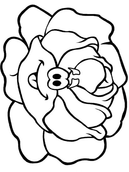 Lettuce Coloring Pages On Con Imagenes Tardor