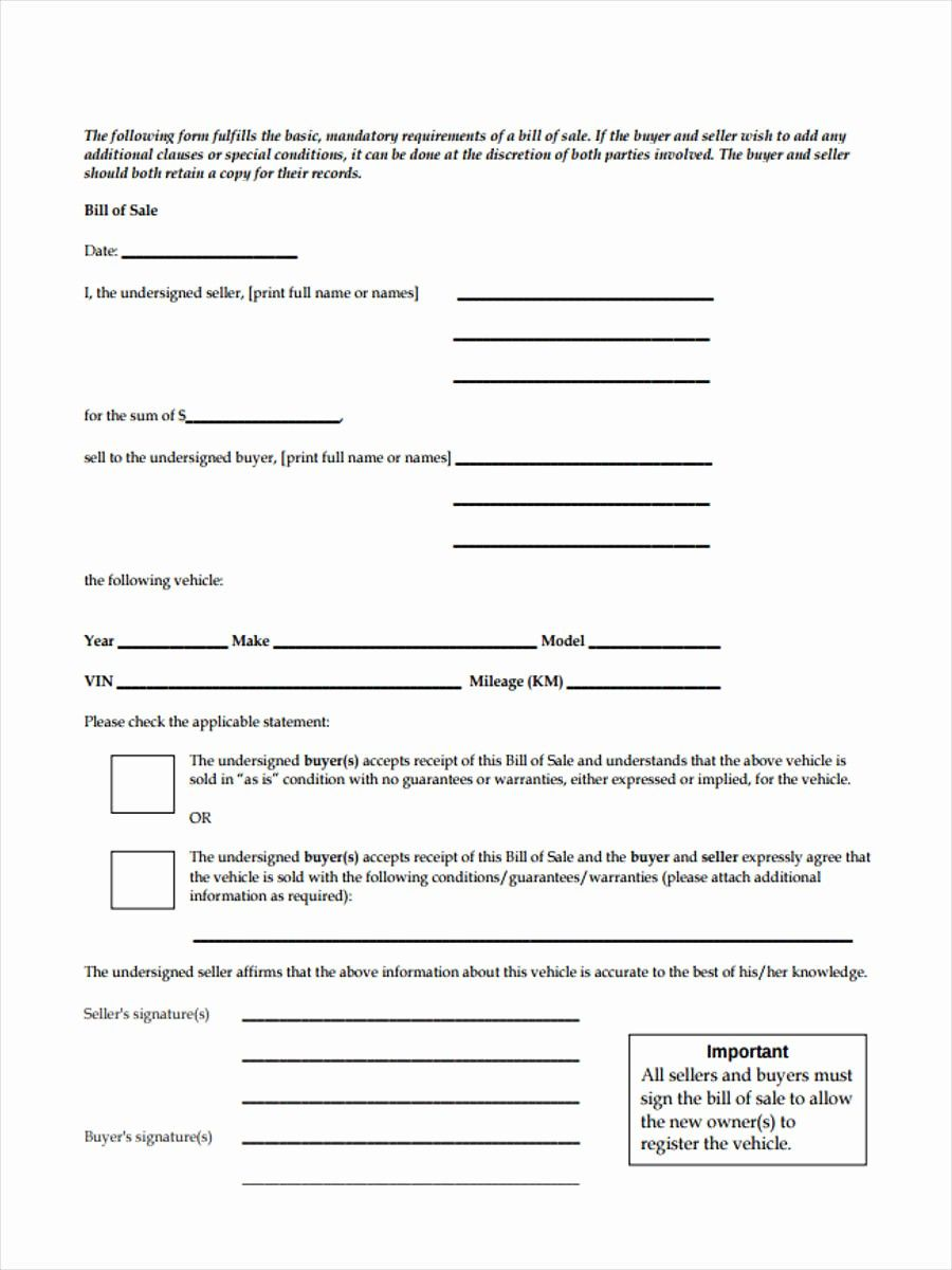 Form for Bill Of Sale Inspirational Business Bill Of Sale ...
