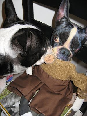 Bully discovers the Bully doll...