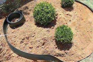 Instalación Floricultura_e_paisagismo_ifsertão_rural Residencial Jardín