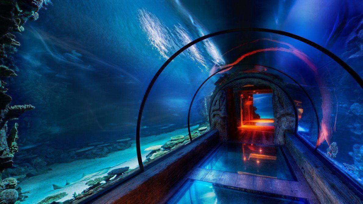 Couloir sous marin