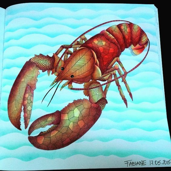 Millie Marotta Lobster