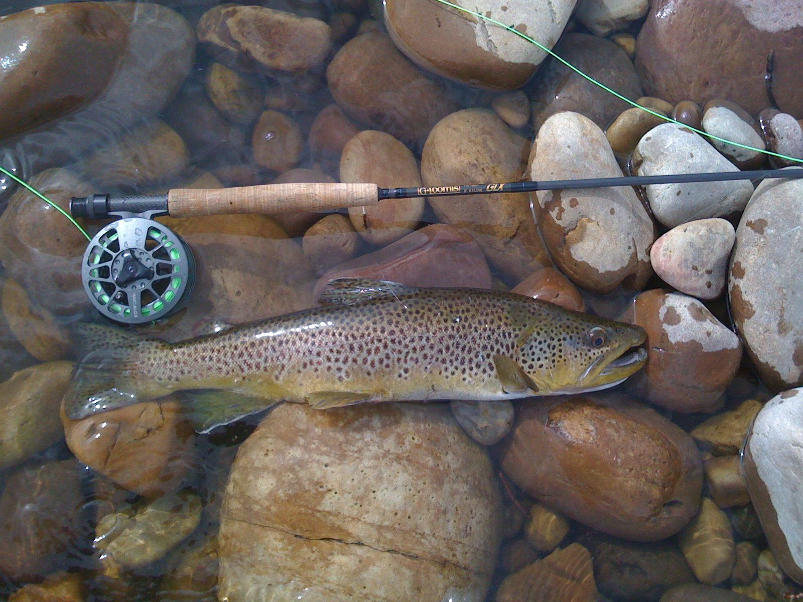 17 best images about fly fishing on pinterest | fly fishing lures, Fly Fishing Bait