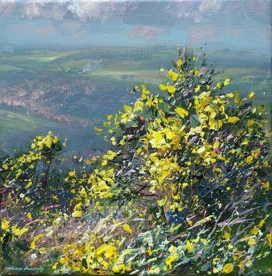 Mark PRESTON - Sunlit Gorse