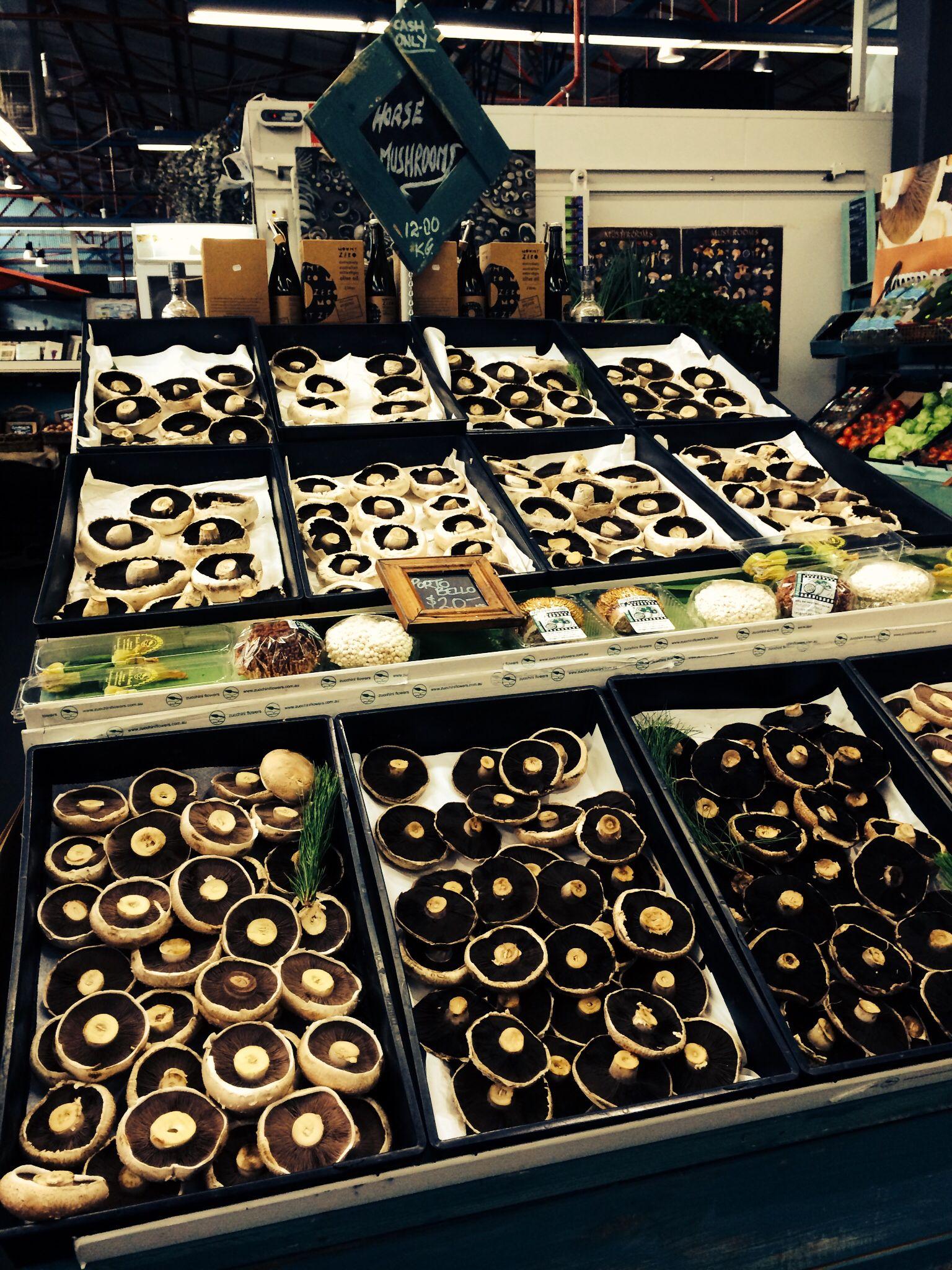 Amazing Mushrooms  Prahran Market Melbourne Australia