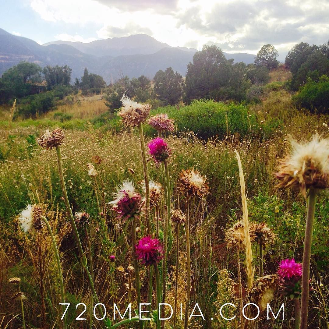 Beautiful evening #hike. Surrounded by the sounds of #nature. Hope you're having a great weekend! #colorado #september #coloradosprings #720media