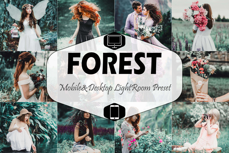Forest Mobile & Desktop Lightroom Preset (Graphic) by