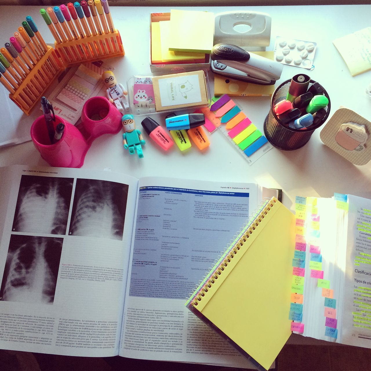 table of a Medical student  | school & journal | Medical