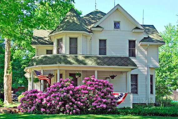 curb appeal plants