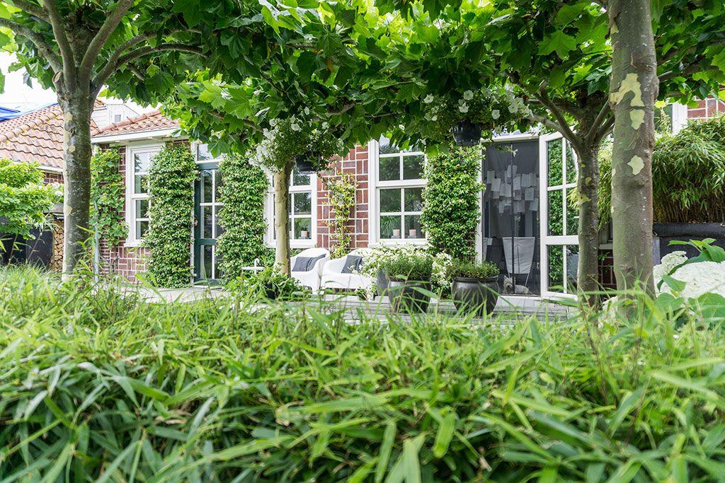 Teken Je Tuin : Annemieke toont haar tuin modern minimalistisch en scandinavisch