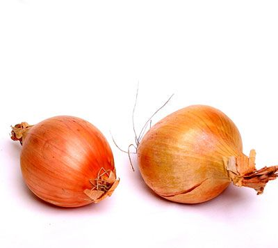 Onion in a jar around the home absorbs bacteria and flu virus... you could try it.