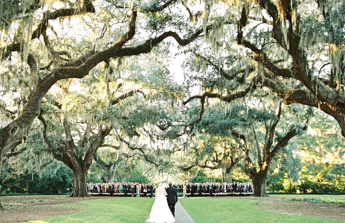 16 Picturesque South Carolina Wedding Venues In 2020 Wedding Venues South Carolina Outdoor Wedding Venues Charleston South Carolina Wedding
