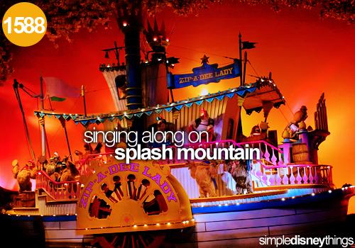 Splash Mountain--Plenty of sunshine heading my way! Zip-a-dee-doo-dah, zip-a-dee-ay!