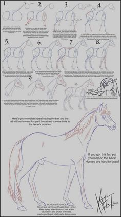40 Easy Step By Step Art Drawings To Practice – Bored Art