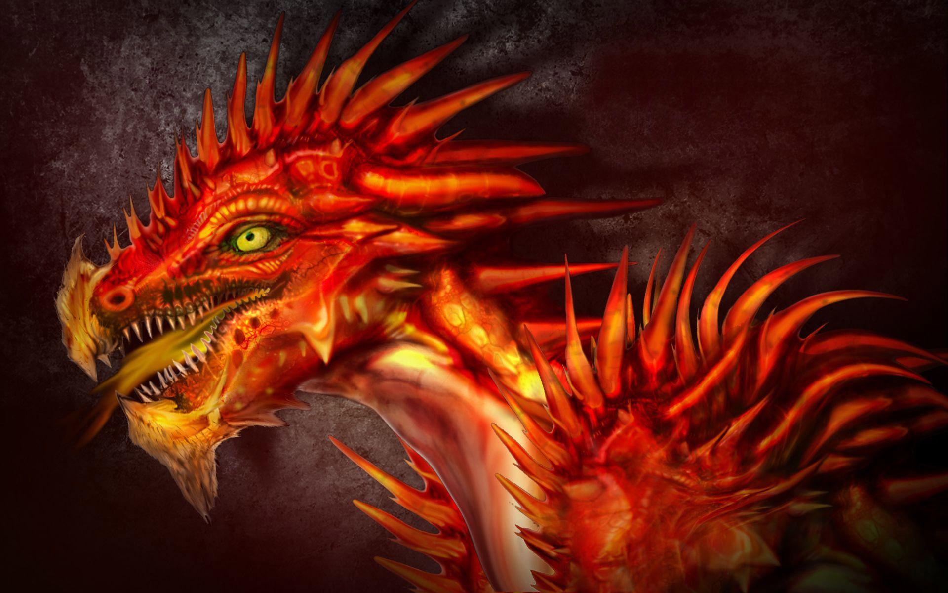 Fire Dragon Wallpaper 51289