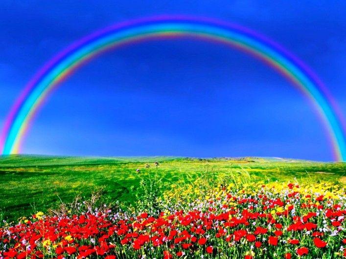 Gambar Pelangi Di Kebun Bunga Beautiful Rainbows Pinterest
