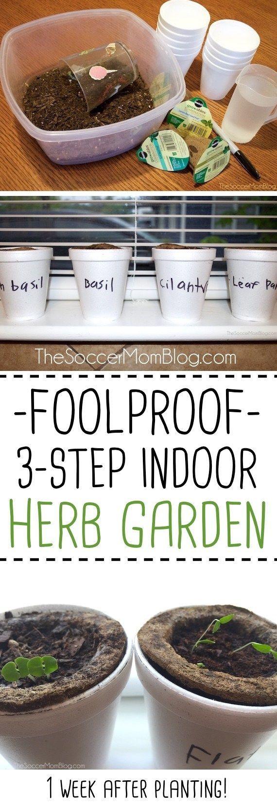 Gardening With Kids Easy 3 Step Indoor Herb Garden 640 x 480