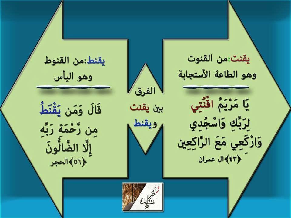 Khaled Bahnasawy Adli Kullanicinin كلمات في القران Panosundaki Pin Resimler